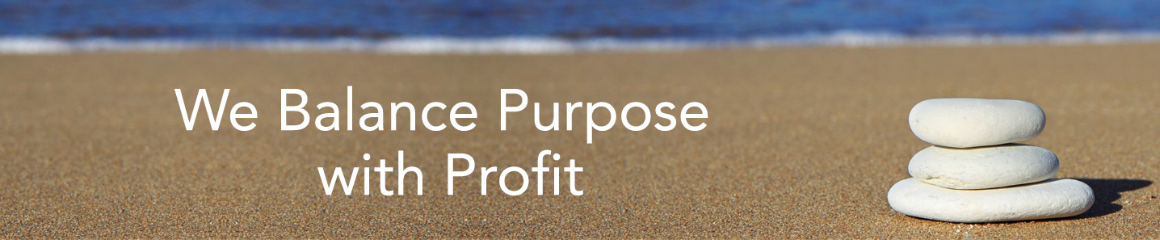 Profit Purpose banner