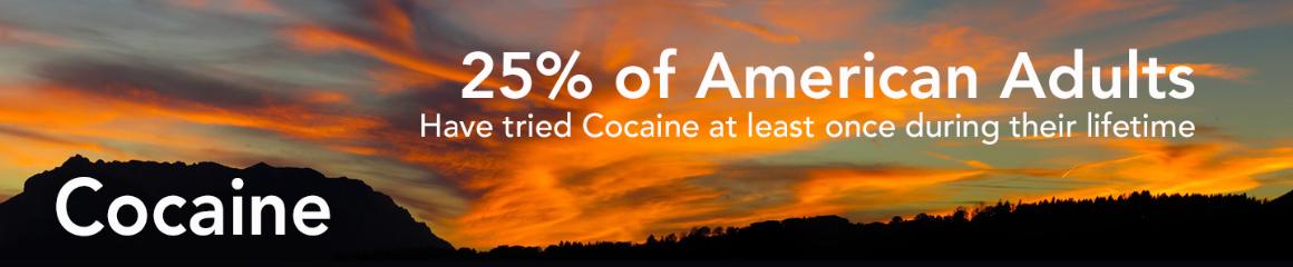 Cocaine Banner 3
